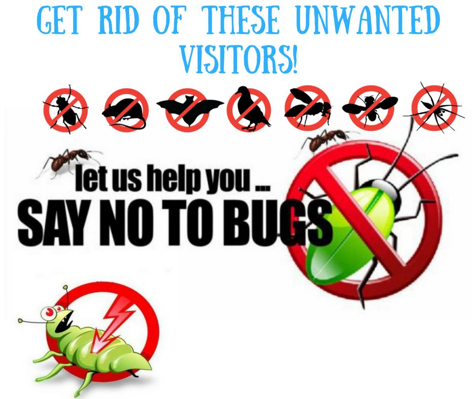http://hellopestcontrol.in/pest-control-service-gurgaon, http://hellopestcontrol.in/pest-control-service-gurgaon
