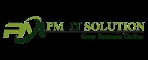 PM IT Solution, jaipur, Digital marketing